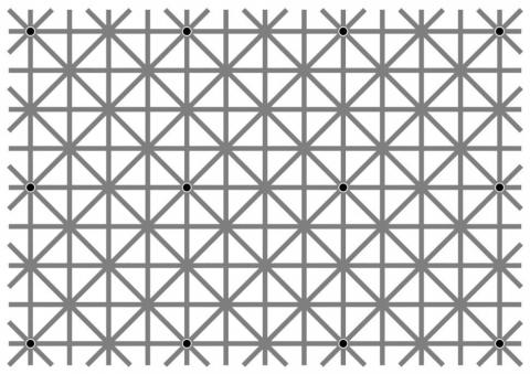 There are 12 dots in this image. Can you see them all at once?