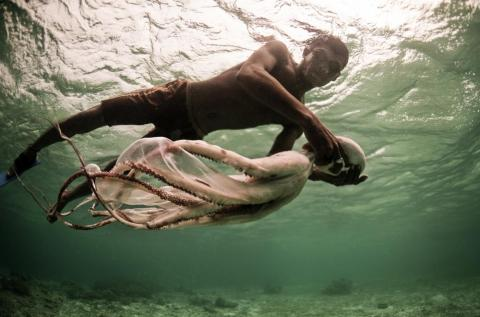 There is some hope that the Bajau's living situation will improve. The World Wide Fund For Nature and Conservation International has been teaching sustainability practices to the Bajau in recent years.