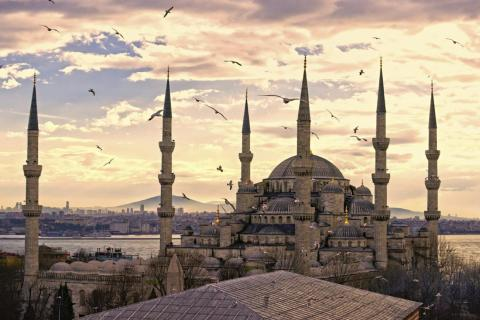 16: Turkey