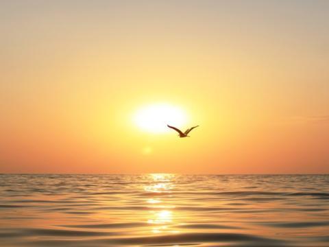 Paisaje: sol sobre el mar