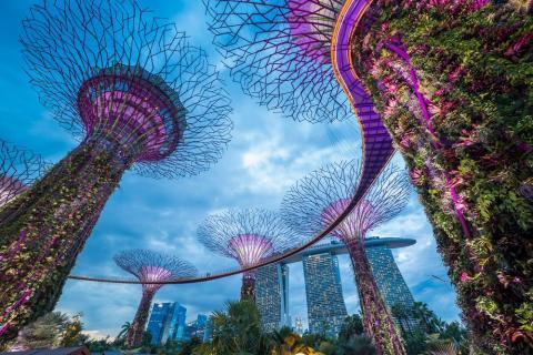 20: Singapore