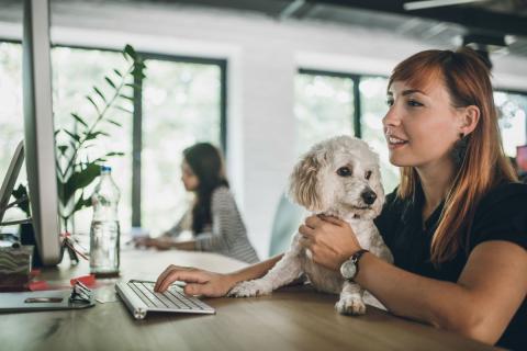 Una mujer con su perro en el trabajo.