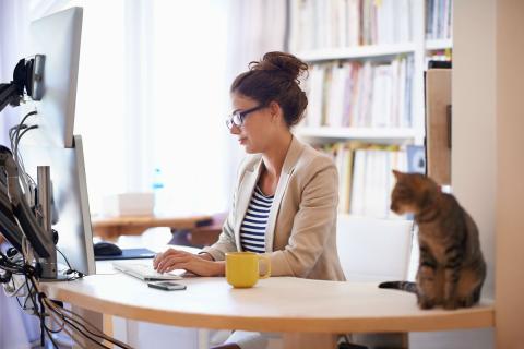 Una mujer trabajando con su gato