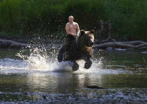 Vladimir Putin, a lomos de un oso pardo.