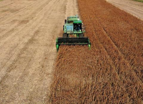 China imports more US agricultural products than Canada and Mexico
