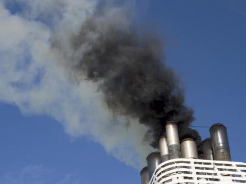 Cruise ships pollute the environment.