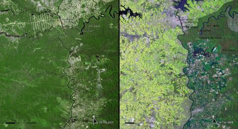 Deforestation is also a major issue in South America. The Atlantic Forest in Paraguay, seen here, shrank significantly between 1973 (left) and 2008 (right).