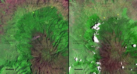 Deforestation, often from logging or to clear room for agriculture, is another highly visible human-driven change. Starting in the 1970s, NASA began using satellite images to document deforestation in national parks around the