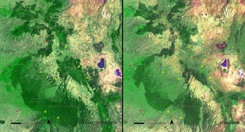 Every year, more than 18 million acres of forest disappear worldwide. That's about 27 soccer fields' worth every minute. More deforestation is visible in Kenya's Mau Forest in these photos from January 1973 (left) and December