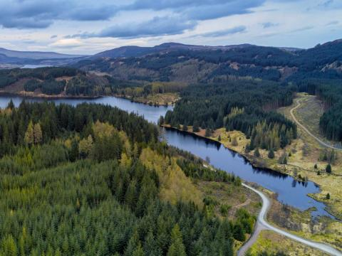 The Great Trossachs Forest National Nature Reserve, Scotland, United Kingdom