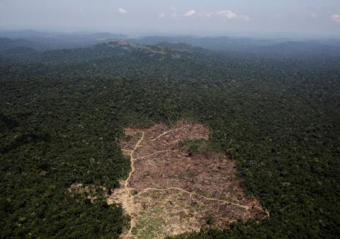 An aerial view of a tract of Amazon jungle recently cleared by loggers and farmers near the city of Novo Progresso, Brazil.