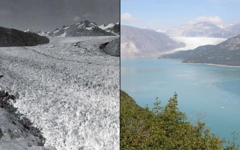 Melting glaciers are some of the most visually dramatic effects of a warming planet. Here's Alaska's Muir Glacier as pictured in August 1941 (left) and August 2004 (right).