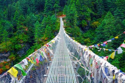 Nepal's Hanging Bridge of Ghasa is used to herd cattle.