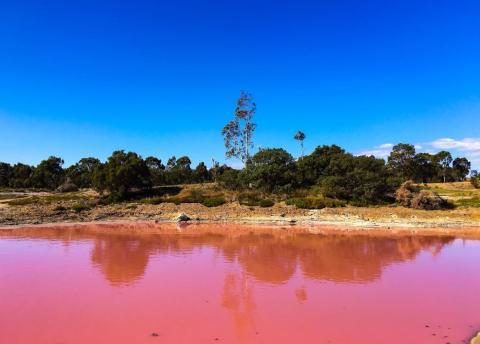 Es más difícil ver el tono rosado del lago de cerca.