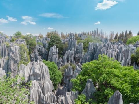 El bosque de piedra, China