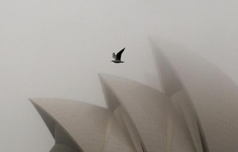 El Teatro de la Ópera de Sydney es el mejor embajador de la arquitectura australiana. Fue diseñado por el arquitecto danés Jørn Utzon e inaugurado en 1973.