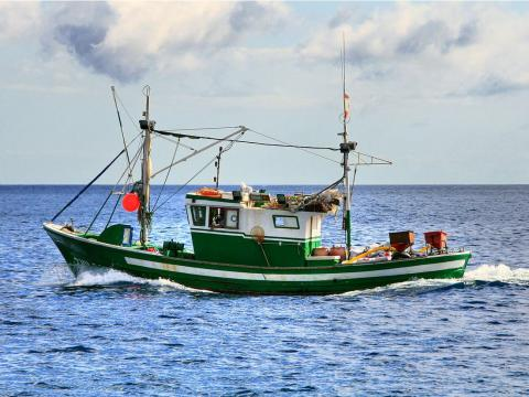 Two are fishing vessels provided by the fishing company Ovenstones, which only carry 12 passengers each.