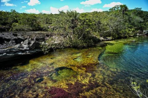 El río está más colorido en los días soleados, cuando la luz brillante se refleja sobre la superficie.