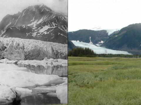 This pair of images shows the retreat of Alaska's Pedersen Glacier from 1917 (left) to 2005 (right).