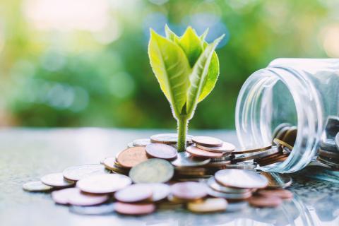 Ahorro dinero ecología