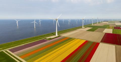 Central eólica en Países Bajos