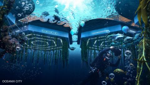 "The concept calls for ""ocean farming,"" which would involve growing food beneath the surface of the water."