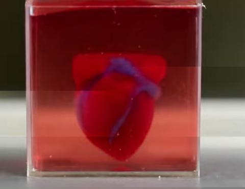 logran imprimir un corazón completo en 3d