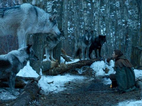 Nymeria y Arya en la temporada siete.