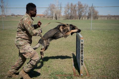John Fountain, piloto de primera clase, un adiestrador de perros, con Deny en la carrera de Obstáculos de Obediencia en la base aérea de Minot, Dakota del Norte, 24 de abril de 2019