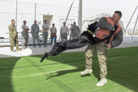 El sargento Brandon Stone, de las Fuerzas de Aire americanas, adiestrador de perros, se protege del impacto de Cola durante una demostración del ejercicio K-9, 17 de agosto de 2017