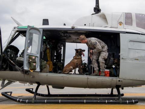 El sargento Cody Nickell, adiestrador de perros, trabaja con Topa para acostumbrarlo a estar en un helicóptero en la base aérea de Yokota, Japón, 26 de julio de 2018