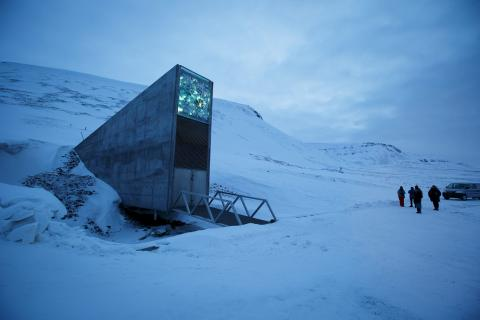 Almacén global de semillas en Svalbard