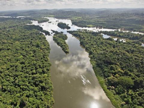 el amazonas brasil