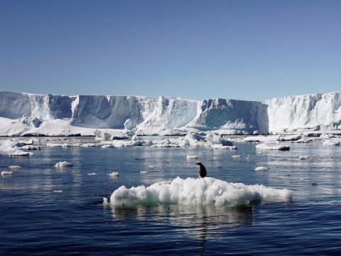 La Antártida es el desierto más grande del mundo
