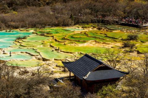 En las aguas termales puedes encontrar una gran variedad de colores, como azul y verde.