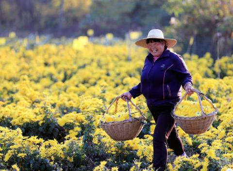 Average household income in China has increased by over 400% in 10 years