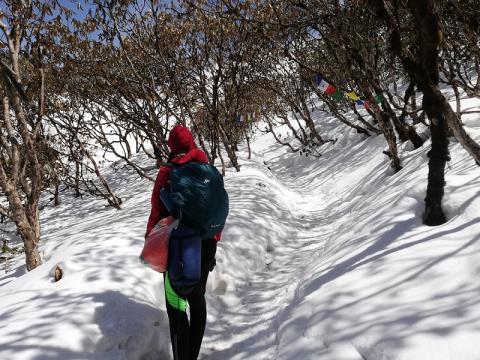 camino nieve trek mardi himal