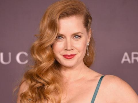 "Amy Adams will star in ""The Woman In the Window."""