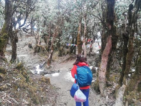 nieve y banderitas llegada low camp