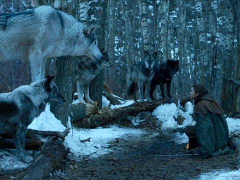 Nymeria y Arya en la temporada 7