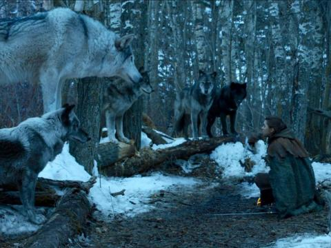 Nymeria and her wolf pack are still roaming Westeros.
