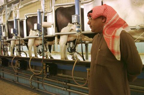 Saudi Arabia has the largest dairy farm in the world.