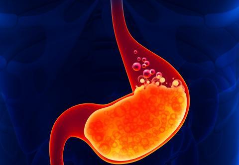 El ácido del estómago es muy potente