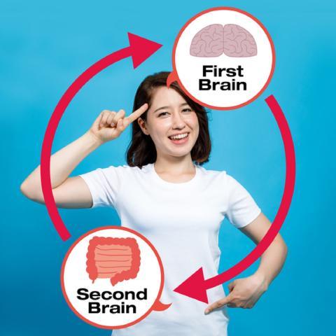 Nuestro estómago es un segundo cerebro