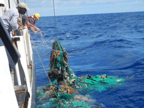 El Gran Parche de Basura del Pacífico está ubicado entre Hawaii y California.