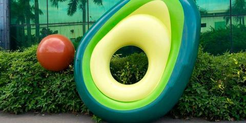 flotador de aguacate con pelota