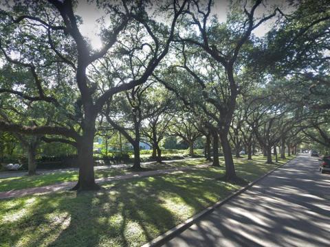 Esta histórica calle arbolada de Houston ha tratado de prohibir las sesiones fotográficas creando una gran polémica