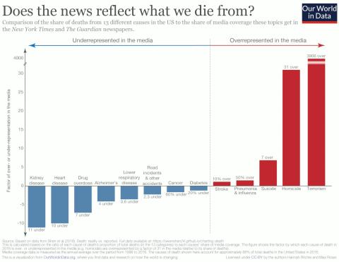 Infografía de los resultados del estudio