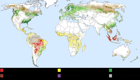 Mapa deforestación