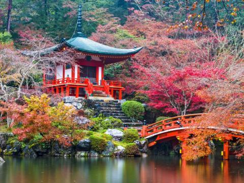 Algunos templos japoneses han prohibido hacer fotos para evitar ciertos comportamientos.